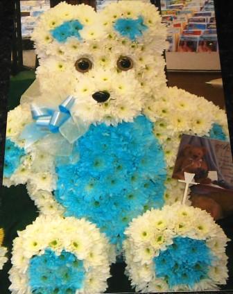 Teddy bear flowers Swansea